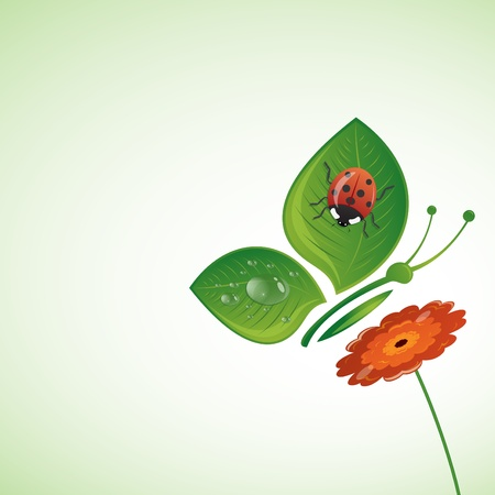 Butterfly-leaf on the flower, vector illustration Vector