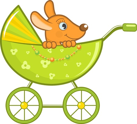 Baby animal in the stroller, illustration Vector