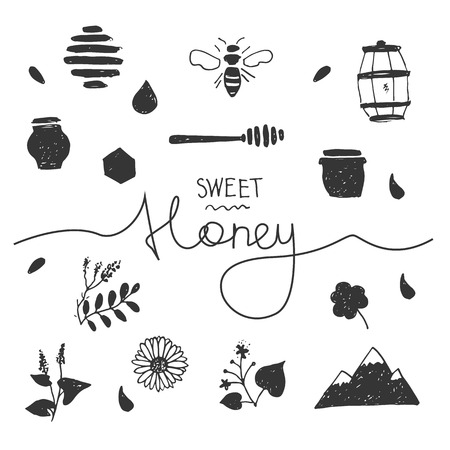 alfalfa: Design elements honey in hand drawn style with lettering.