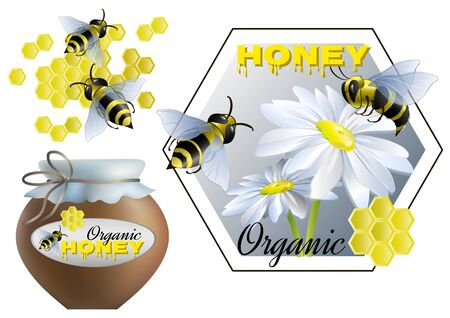 Set on theme of honey and beekeeping. Vector illustration. 向量圖像