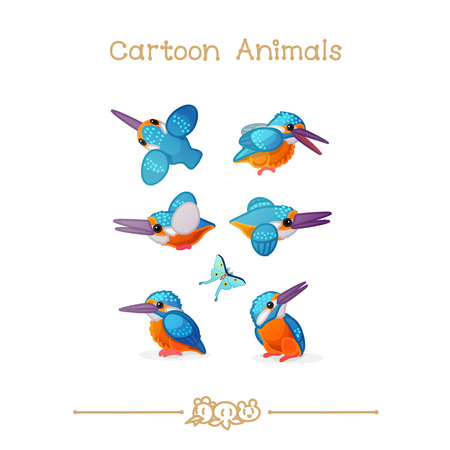 vector illustration collection Cartoon Animals. Common kingfisher Illustration