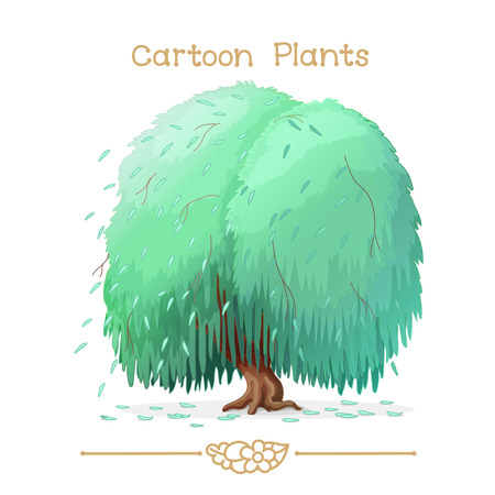 weeping willow tree: Illustration collection Cartoon Plants. Weeping willow. Clipart isolated on transparent background. Hand drawn graphics. Nature design elements Illustration