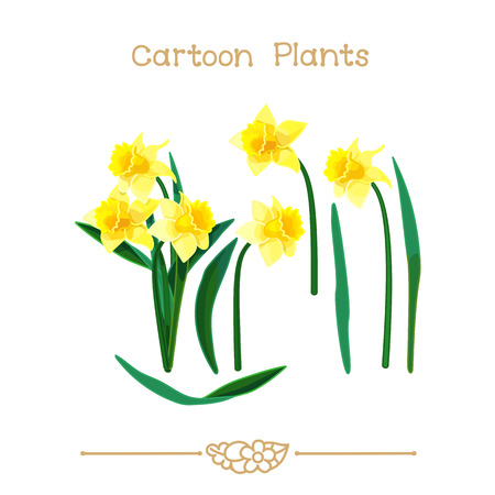 Illustration collection Cartoon Plants. Narcissus set. Clipart isolated on transparent background. Hand drawn graphics. Nature design elements
