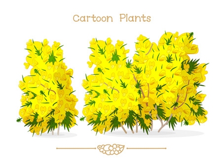 Illustration collection Cartoon Plants. Spring blooming yellow ulex europaeus, mountain s gorse, whin. Clipart isolated on transparent background. Hand drawn graphics. Nature design elements