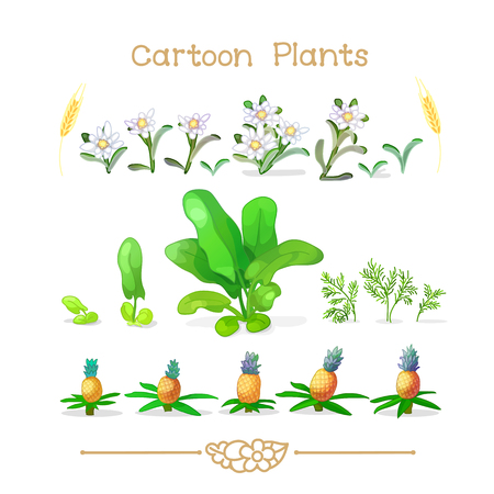 Illustration collection Cartoon Plants. Botany set. Clipart isolated on transparent background. Hand drawn graphics. Nature design elements 向量圖像