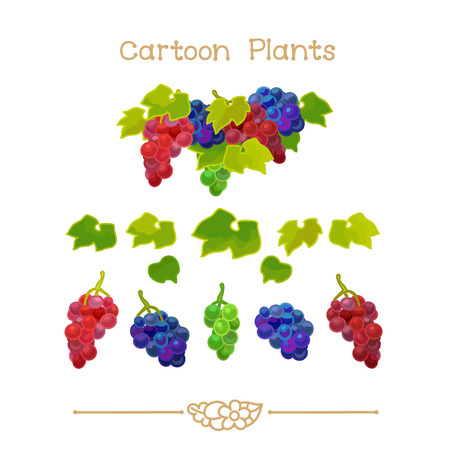 Illustration collection Cartoon Plants. Grapevine clusters with green leafs set. Clipart isolated on transparent background. Hand drawn graphics. Nature design elements Çizim