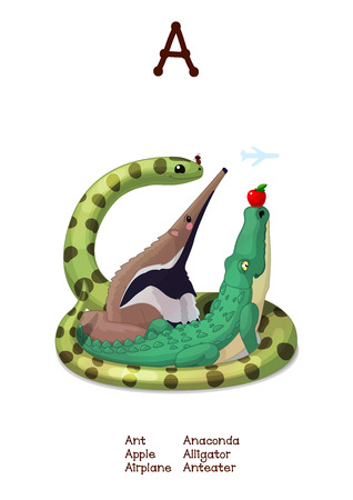 English Alphabet series of Amusing Animals. Cartoon illustration for letter A: Ant, Anteater, Alligator, Anaconda, Apple. Abc animals posters collection. Wall art for kids. Baby pics. Hand drawn creatures. EPS 10 Illustration