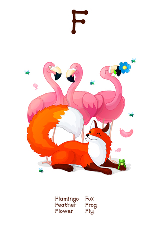 English Alphabet series of Amusing Animals. Cartoon illustration for letter F: Feather, Frog, Fox, Flamingo, Fly. Abc animals posters collection. Wall art for kids. Baby pics. Hand drawn creatures. EPS 10