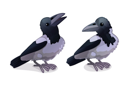 vector cartoon animal clipart: crows