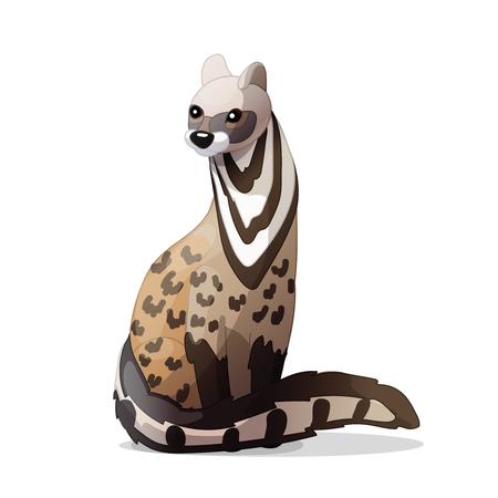 vector cartoon animal clipart: civet cat