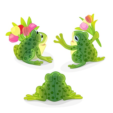vector cartoon animal clipart: green toad, frog