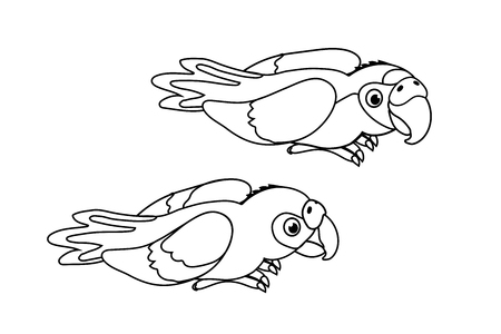 vector cartoon animal clipart ara parrots, macaw