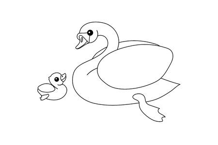 vector line cartoon animal clip art white mute swan