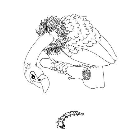 vector line cartoon animal clip art predator vulture