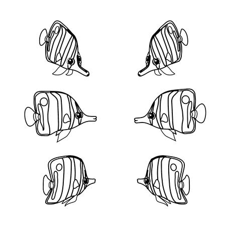 vector line cartoon animal clip art chelmon rostratus Stock Vector - 123898613