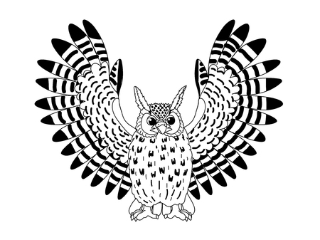 vector line cartoon animal clip art eagle-owl bird