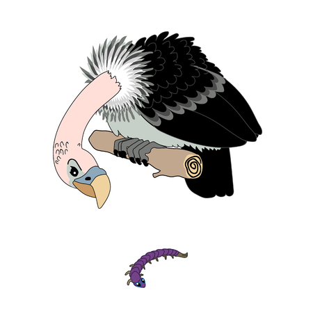 Vector scandi cartoon animal clip art depredador buitre