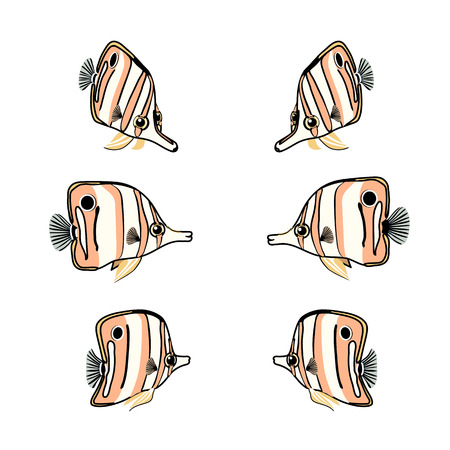vector scandi cartoon animal clip art chelmon rostratus Stock Vector - 123989355