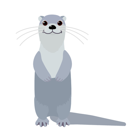 vector flat cartoon animal clip art river common otter Illustration