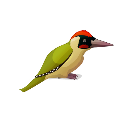 vector cartoon animal clip art green woodpecker Ilustracja
