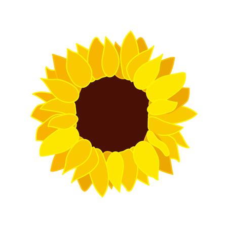 vector sunflower seed head flat flower icon