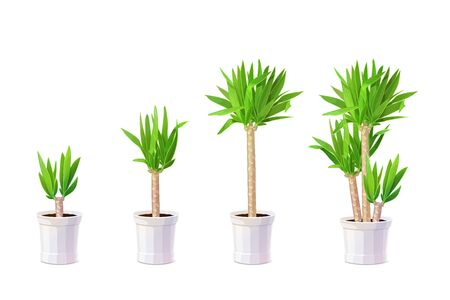 vector cartoon plants nature clip art. Potted houseplant set Иллюстрация