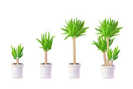 vector cartoon plants nature clip art. Potted houseplant set Ilustração