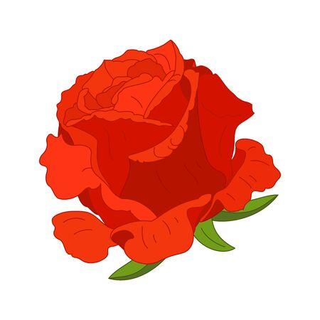vector rose flower clip art on white isolated background