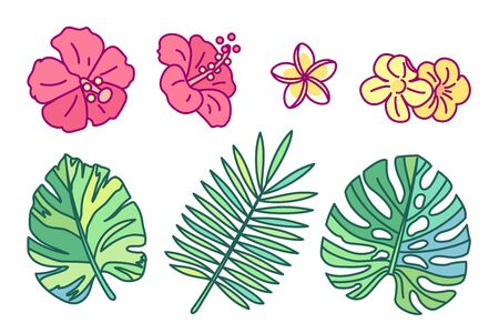 vector handdrawn cute plant clipart flowers leaves