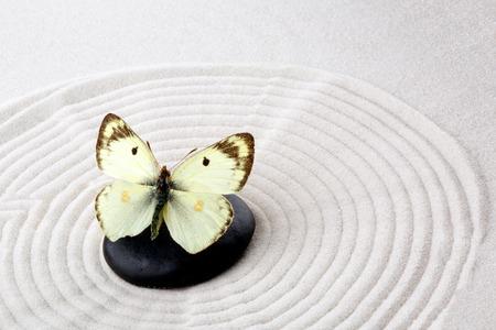 Zen steen met vlinder