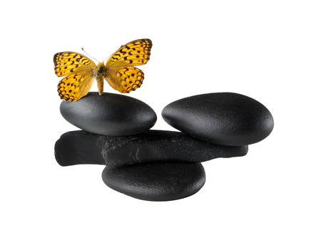 butterfly stationary: Zen stones balance concept with butterfly Stock Photo