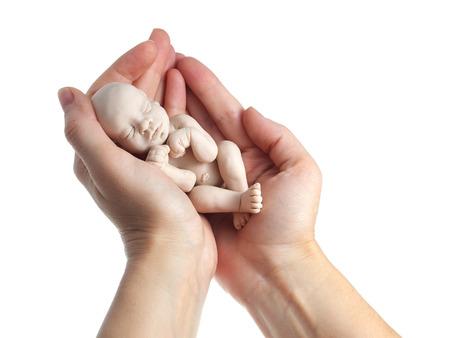 embryo: embryo in woman hand