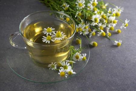 chamomile tea: cup of chamomile tea with chamomile flowers