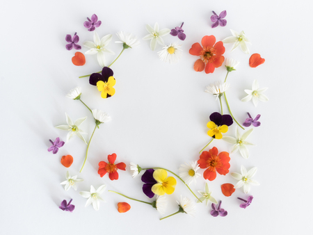 Frame of ccolourful flowers background. Flat lay