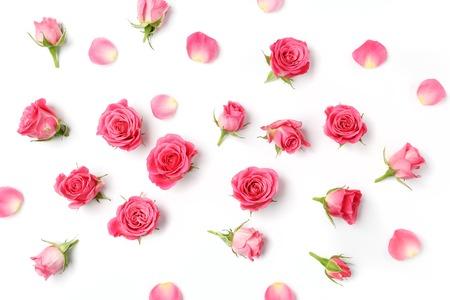 Verschiedene Rosen Köpfe. Verschiedene weiche Rosen und Blätter auf einem weißen Hintergrund verstreut, Draufsicht. Wohnung Laien Standard-Bild