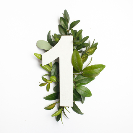 Number one shape with green leaves. Nature concept. Flat lay. Top view