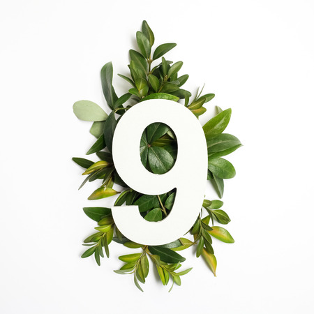 Number nine shape with green leaves. Nature concept. Flat lay. Top view Foto de archivo
