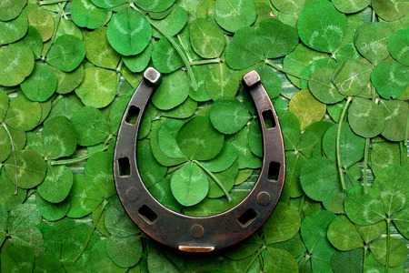 horse shoe on green clovers background. St. Patricks day