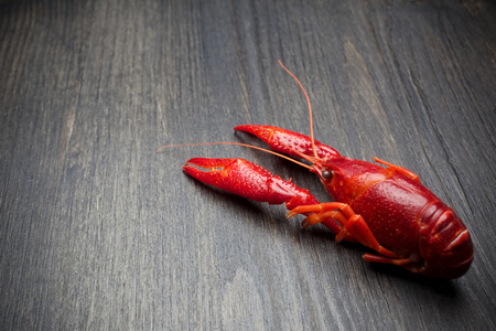 Red cooked lobster on black wooden table