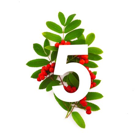Number five shape with green leaves and red rowan berries isolated on white. Nature concept. Flat lay. Top view