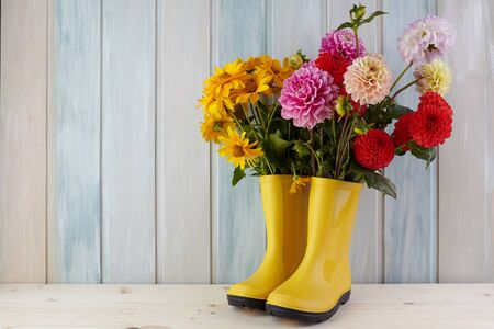 Yellow rubber boots standing on a wooden background of dirt and a flower inside