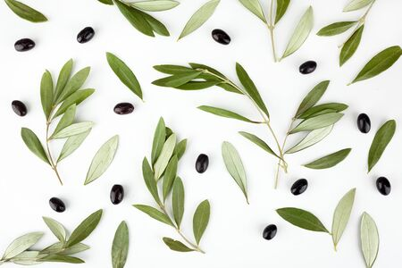 Top view of fresh black olive fruit with leaves on white