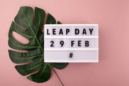 White block calendar present date 29 and month February and plant on pink background. Leap day Archivio Fotografico