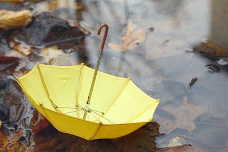 Yello umbrella in a poddle with autumn fall leaves. Autumn concept