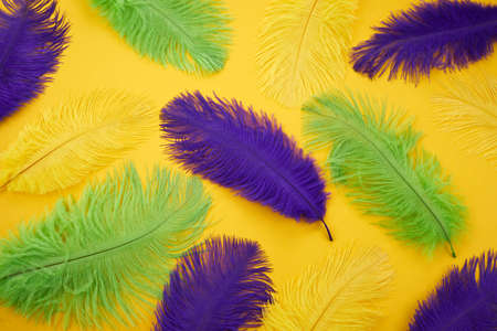 Mardi gras color feathers background. Nature patern