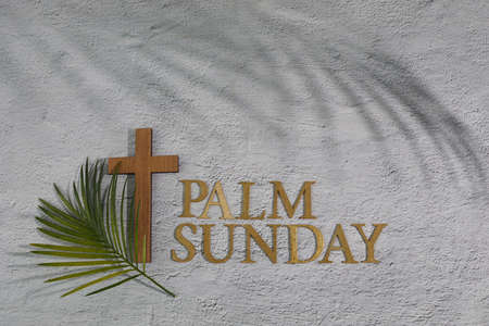 Palm sunday background. Cross and palm on grey background.