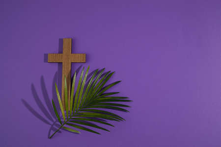 Palm sunday background. Cross and palm on purple background.