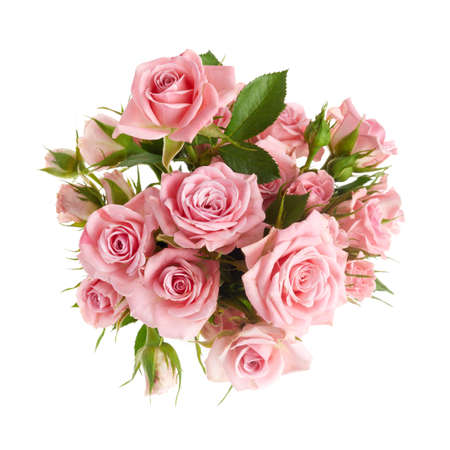 Beautiful pink rose flowers arrangement isolated on white background