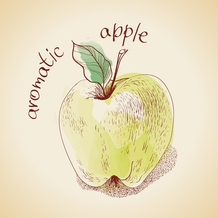 Illustration of vintage apple Illustration