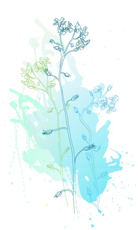 illustration of blue flowers and watercolor stains